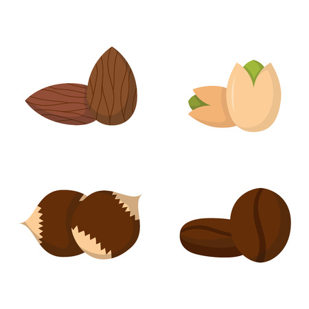 brazil nut: Heap from various kinds of nuts. Pile of nuts almond, hazelnut, cashew, brazil nut isolated on white. Pile of nuts organic healthy seed ingredient and pile of nuts heap almond nature nuts. Illustration