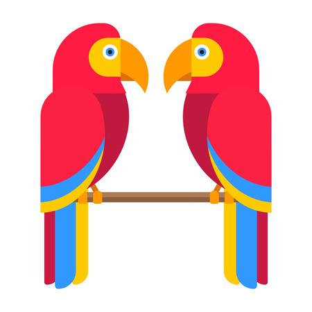 Cartoon parrot wild bird. Tropical feather zoo fauna flying ara. Exotic animal vivid bright vector illustration. Cute design fly jungle pretty wing macaw lovebirds. Illustration