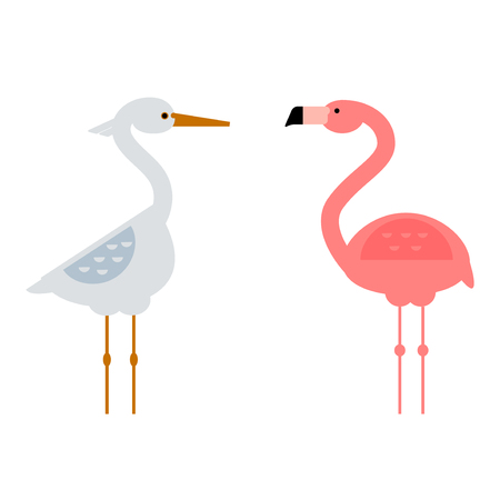 african stork: Pink flamingo wild animal elegance character. Colorful african beauty exotic bird. Nature tropic cool decorative flat lovely stork zoo vector illustration.