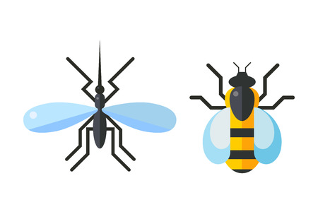 Insect fly and bee icon flat isolated on white background