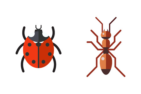Insect ladybug and ant icon flat set isolated on white background Illustration