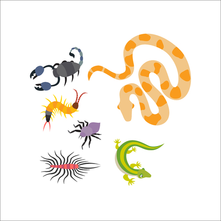 Vector flat snakes and other danger animals collection isolated on white background. Different reptiles dangerous nature insects cartoon icon.