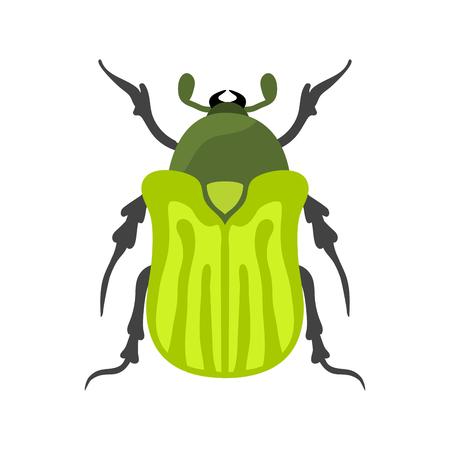 Icône Insecte plat isolé vecteur illustration. Banque d'images - 71762250