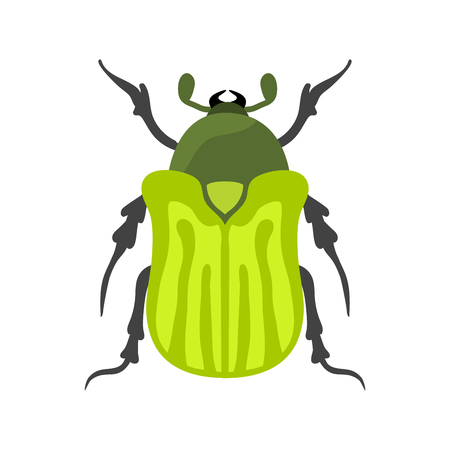 babosa: Insect icon flat isolated vector illustration. Foto de archivo