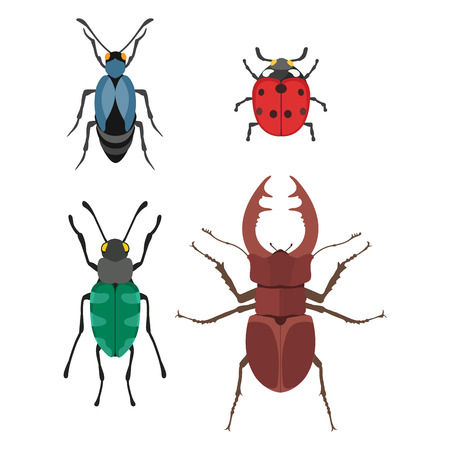 stag beetle: Insect icon flat isolated vector illustration. Stock Photo