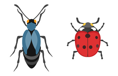 Insect icon flat isolated vector illustration. Illustration