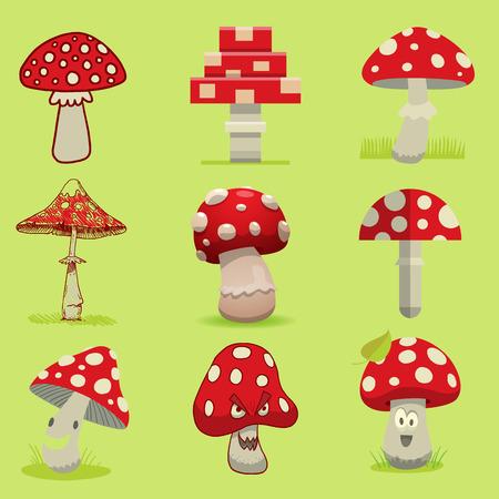 Amanita poisonous mushroom, isolated vector
