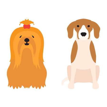 dachshund: Funny cartoon dog character bread cartoon puppy friendly adorable canine vector illustration.