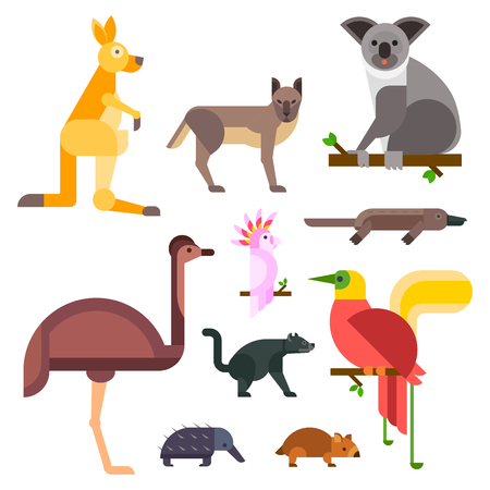 Australia wild animals cartoon popular nature characters flat style and australian mammal aussie native forest collection vector illustration. Illustration