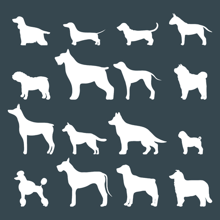 Funny cartoon dog character bread white silhouette in cartoon style vector illustration. Ilustrace