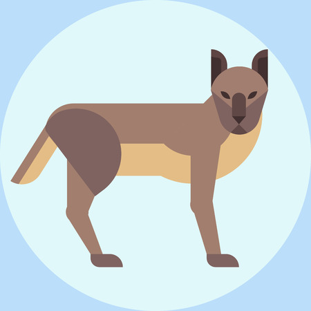 watchful: Hyena zoo young crocuta portrait character wildlife mammal predator dangerous wild animal vector Illustration