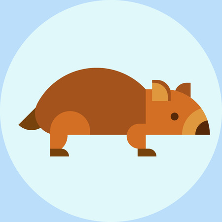 Wombat national park australia herbivore fauna furry outdoors tasmania wildlife australian vector