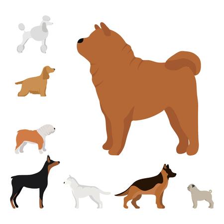 dachshund: Funny cartoon dog character bread in cartoon style vector illustration. Illustration