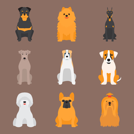 Set of adorable dog characters. Cartoon illustration. Illustration