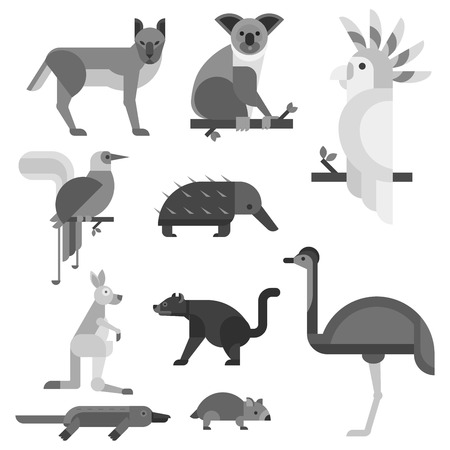 Australia wild animal cartoon popular nature characters flat style. 向量圖像