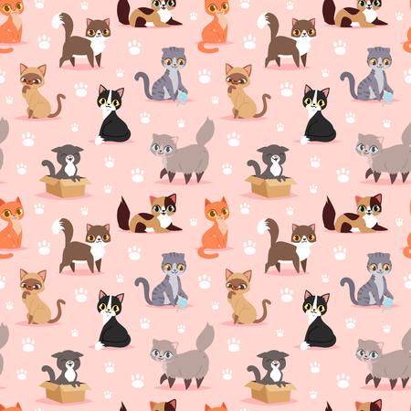 고양이 품종 귀여운 새끼 고양이 애완 동물 초상화 무성한 젊은 사랑 스럽다 만화 동물 벡터 일러스트 원활한 패턴