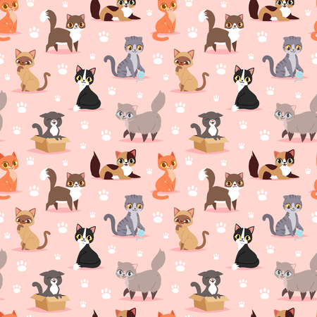Cat breed cute kitten pet portrait fluffy young adorable cartoon animal vector illustration seamless pattern