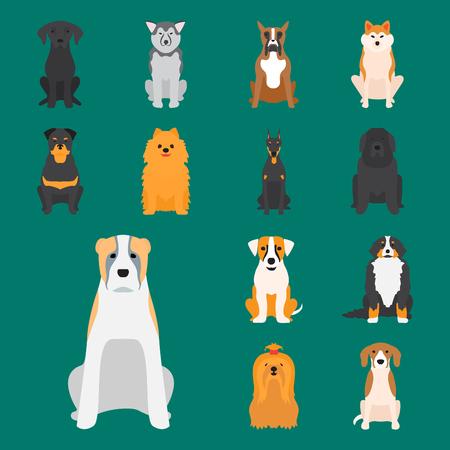 yorkshire: Funny cartoon dog character bread cartoon puppy friendly adorable canine vector illustration.