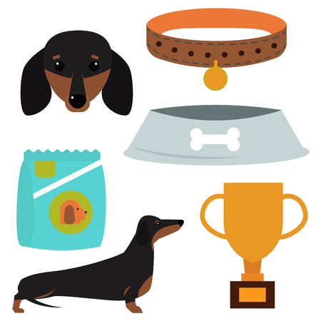 Dachshund dog playing vector illustration elements set flat style puppy domestic pet accessory. Illusztráció