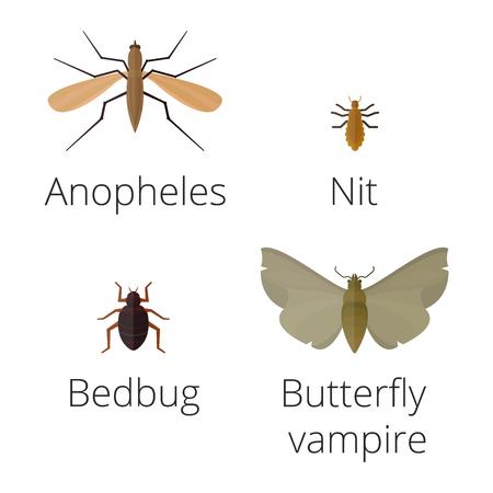 カラフルな昆虫アイコンは、野生動物の翼詳細夏ワーム キャタピラー バグ野生のベクトル図を分離しました。