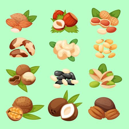 Set of nuts vector illustration food natural Vettoriali