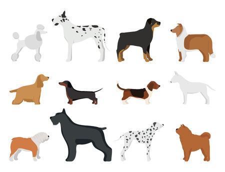 Pain drôle de personnage de chien de dessin animé dans une illustration vectorielle de style dessin animé. Banque d'images - 77744661