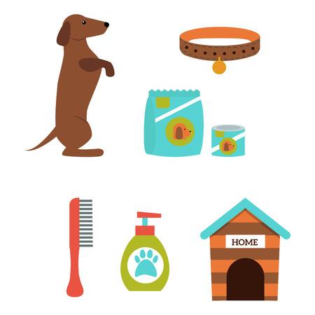 Dachshund dog playing vector illustration elements set flat style puppy domestic pet accessory. Illustration