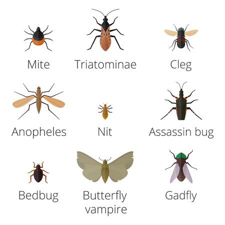 Bunte Insekten Symbole isoliert Wildnis Flügel Detail Sommer Wurm Raupe Bugs wilde Vektor-Illustration. Standard-Bild - 77890549