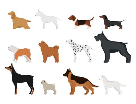 Grappig cartoon hond karakter brood in cartoon stijl vector illustratie.