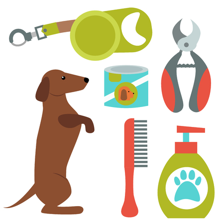 Dachshund dog playing vector illustration elements set flat style puppy domestic pet symbol. Cartoon doggy adorable looking breed canine presentation accessory.