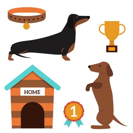 Dachshund dog playing vector illustration elements set flat style puppy domestic pet accessory. Illustration