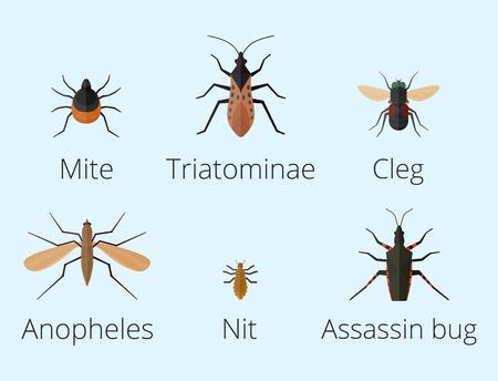Bunte Insekten Symbole isoliert Wildnis Flügel Detail Sommer Wurm Raupe Bugs wilde Vektor-Illustration. Standard-Bild - 78187210