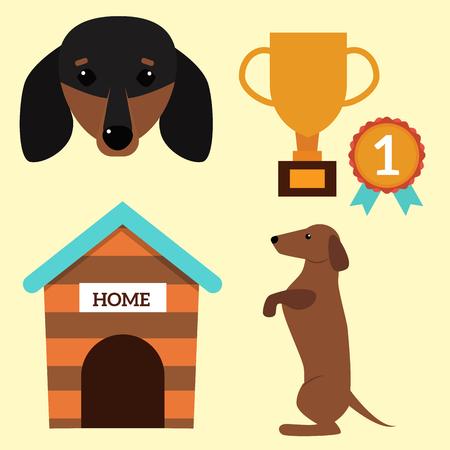 Dachshund dog playing vector illustration elements set flat style puppy domestic pet accessory. Stock Photo