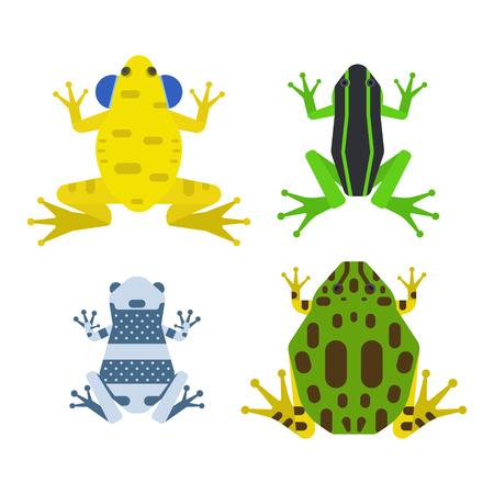 カエル漫画熱帯動物漫画水陸両生動物マスコット キャラ野生のベクトル イラスト。  イラスト・ベクター素材