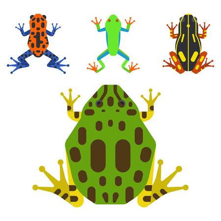 Frog cartoon tropical animal cartoon amphibian mascot character wild vector illustration. Reklamní fotografie - 80054250