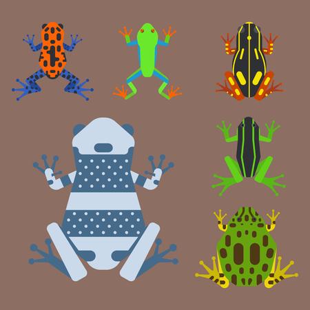 Frog cartoon tropical animal cartoon amphibian mascot character wild vector illustration. Reklamní fotografie - 80128603