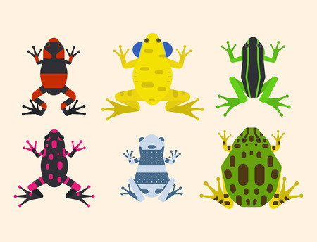 Frog cartoon tropical animal cartoon amphibian mascot character wild vector illustration.
