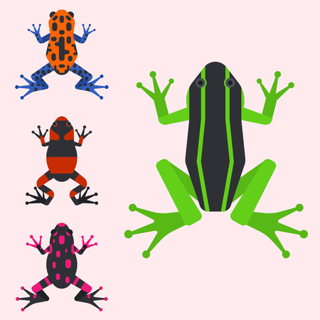Frog cartoon tropical animal cartoon nature icon funny and isolated mascot character wild funny forest toad amphibian vector illustration. Graphic ecosystem croaking hop drawin Ilustrace