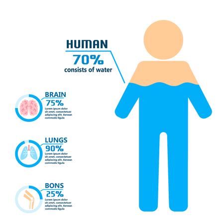 Body water drink infographics health people diet lifestyle concept brochure infochart vector illustration Ilustração