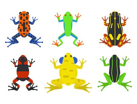 croaking: Frog cartoon tropical animal cartoon amphibian mascot character wild vector illustration.