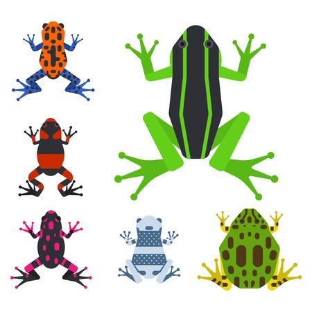 Tropische Tierkarikatur des Froschkarikaturamphibie-Maskottchencharakters wilde Vektorillustration.