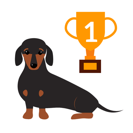 pedigreed: Little dachshund puppy cute brown purebred mammal sweet dog young pedigreed animal breed vector illustration