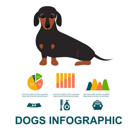 Dachshund dog playing elements set flat style symbols puppy domestic animal illustration. Иллюстрация
