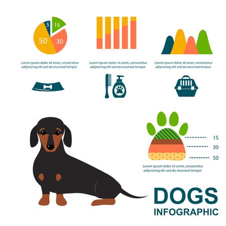 Dachshund dog playing elements set flat style symbols puppy domestic animal illustration. 向量圖像