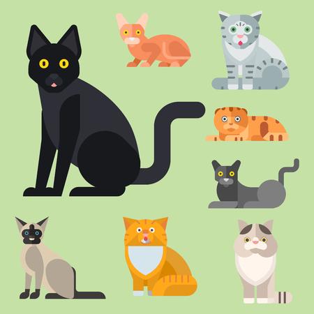 Katten vector illustratie schattige dieren grappige decoratieve karakters kleur abstracte katachtige kitten binnenlandse trendy huisdier getrokken. Gelukkig schattig konijnenras van het zoogdierbont.