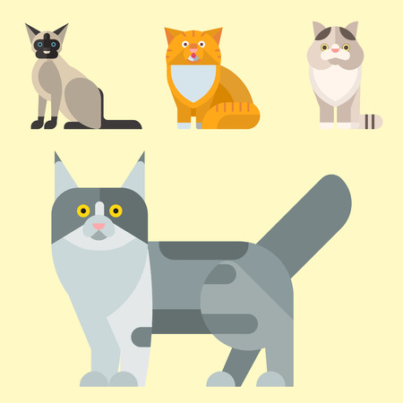 Cats vector illustration cute animal funny decorative kitty characters feline domestic kitten trendy pet drawn