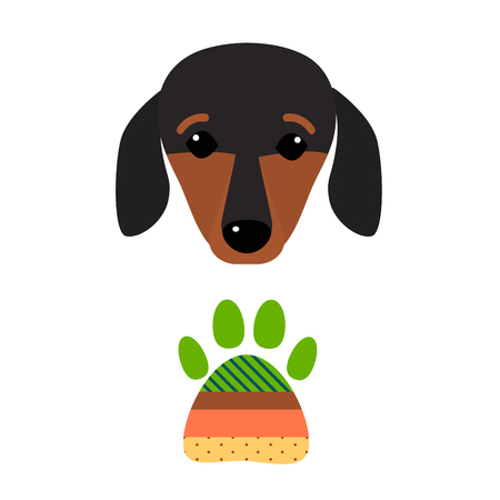 friend nobody: Little dachshund puppy head purebred mammal sweet dog young pedigreed animal breed vector illustration Illustration