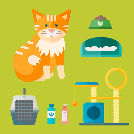 Colorful cat accessory icons