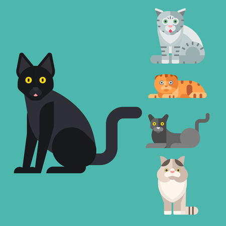 Cats vector illustration. Stok Fotoğraf - 86735564