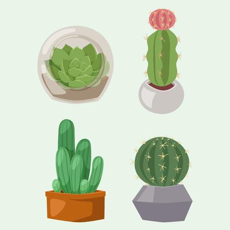 Cactus nature desert flower green mexican succulent tropical plant cacti floral illustration.